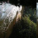 Stream splitting the coffee and tea plantations