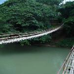 とっても揺れるロボック川の吊り橋