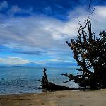 chiria tapu,beach
