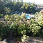 Aussicht vom Zimmer auf Pool und Garten