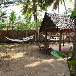 Photo of Sharanagati Yogahaus