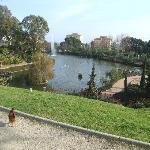 Nearby Paloma Park
