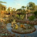 Caribi Bar in Hilton Sharm Dreams