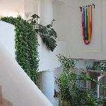 Cascading greenery in the entrance