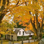 autumn (Whistler's Inn Coach house)