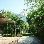 giardino La Palma