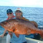 Red Snappers come in pretty packages.