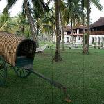bullock cart in Kerala Palace