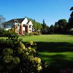 The Shamrock Garden