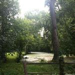 point d'eau, fin été 2010