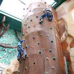 Climbing walls inside