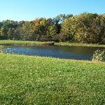 Enjoy fishing or just relaxing by the pond