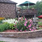 The beauty of the flower garden