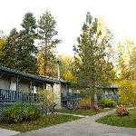 Cabins in fall