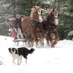 Winter sleigh riding fun!
