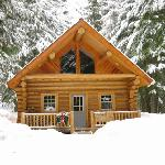 log cabins in the woods