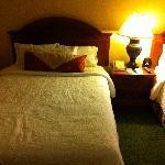Hilton Garden Inn Beds