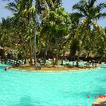 Flamingo Beach Hotel Foto