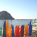 Kayaking in Morro Bay