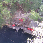 Yokdzonot swimming platform from above