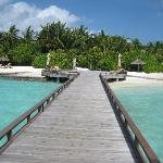 Welcome to Baros Maldives!