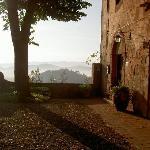 Beautiful morning at Montestigliano