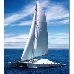 Humu Humu Catamaran