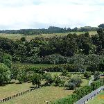 View over Waitangi River from deck