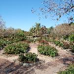 One of the gardens