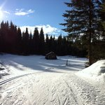 Biathlon range and cabin