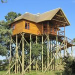 Pezulu Tree House/Mountain View Treehouse