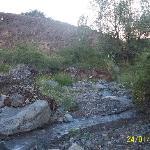 Arroyo de la cabaña