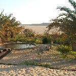au détour des dunes ,un oasis avec une source naturelle d'eau chaude!