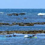 Snorkel Cerca de Mar Abierto cerca da la Playa de Ponta de Mangue