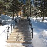 First set of steps from the parking to to the Cedars