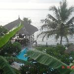 Villa Arjuna - view from the room
