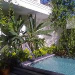 Gorgeous pool in lovely garden
