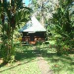 Nuestra rústica cabaña