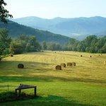 40-acre Private Retreat to Explore