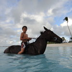 Horse Back Riding at Lighthouse Bay Resort Foto