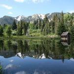 Hallam Lake- Spring