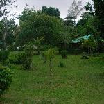 il giardino davanti casa