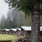 Some of the themed cabins