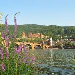 Heidelberg - www.kurpfalzhof.com