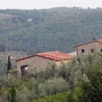 Classic Tuscan view
