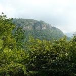 Near Thekkady
