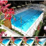 Swimming Pool/Piscina