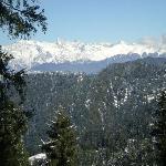Narkanda fresh snowfall
