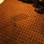 dirty stained damp carpet