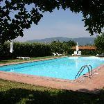 La piscine. Au fond, sur la colline, la ville d'art de Cortona
